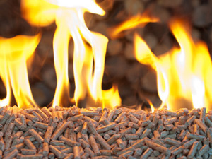 Oak Pellets in  flames- chopped firewood background